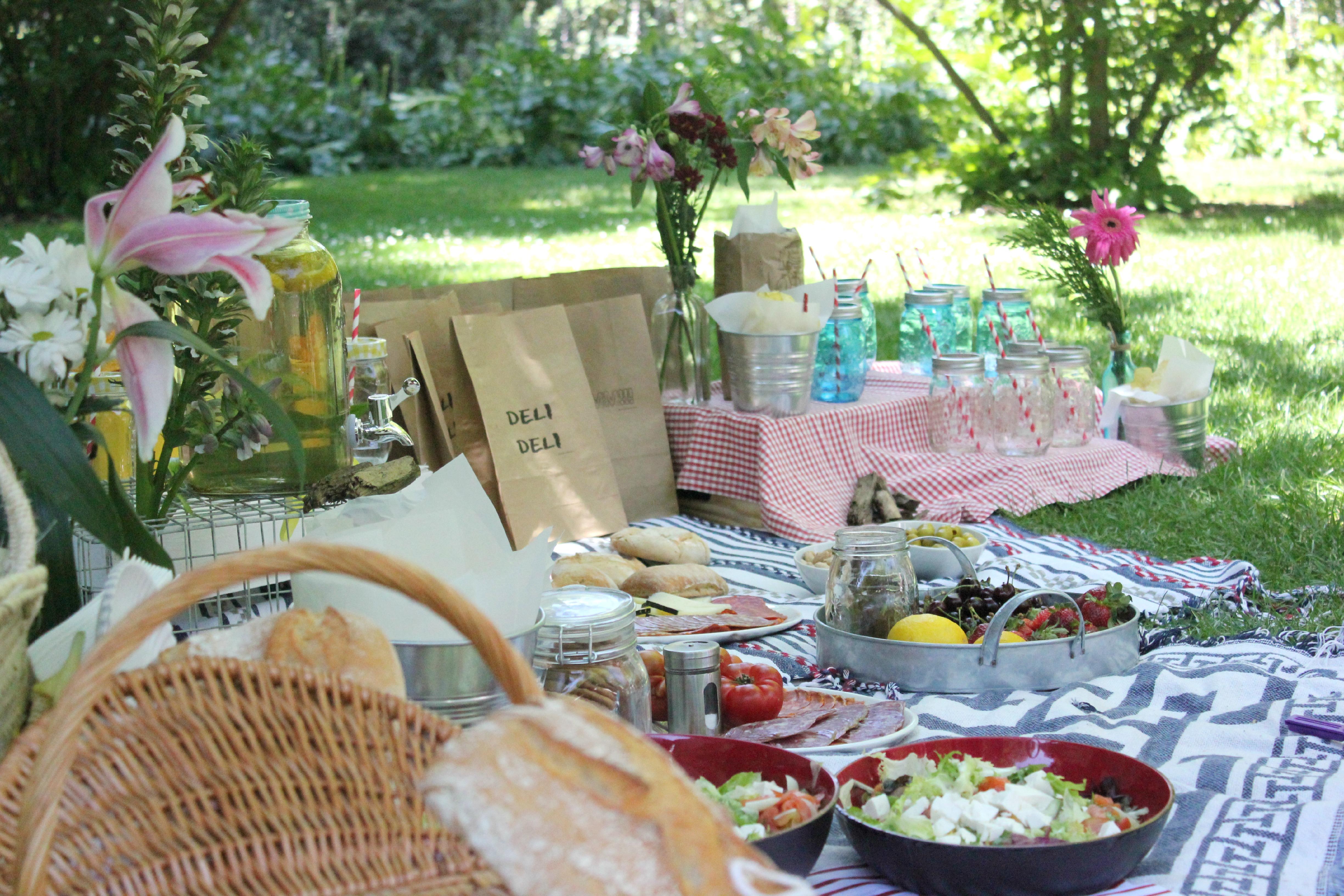 Un picnic de cumplea os pepita pancracia Como organizar mi jardin